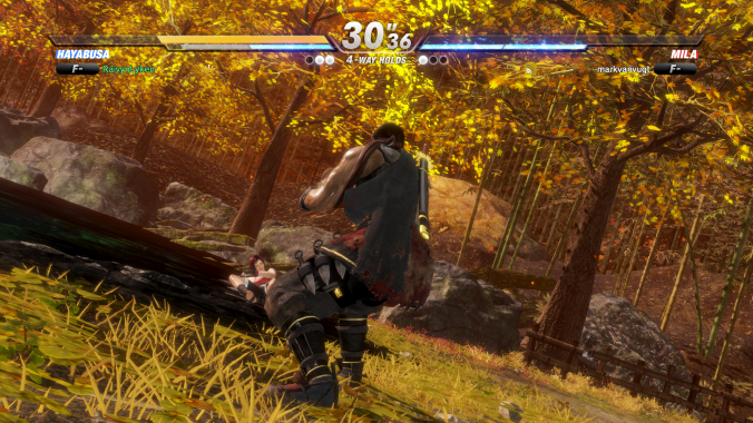 DEAD OR ALIVE 6_20190305172320
